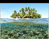 Snorkeling The Coral Reefs in Truk Lagoon.